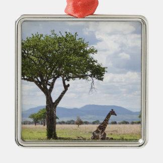 Op safari in Nationaal Park Mikumi in Tanzania, Zilverkleurig Vierkant Ornament