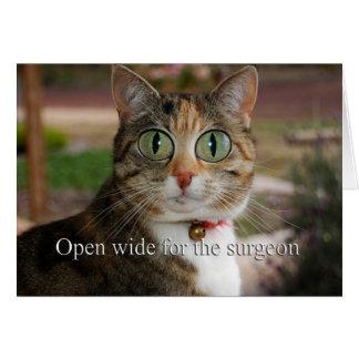 Open wijd voor de chirurg - de Chirurgie van het Kaart