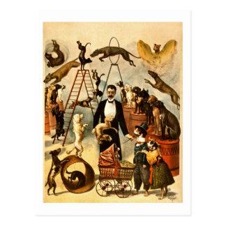 Opgeleid Akte 1899 van de Hond het Vintage Poster