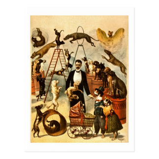 Opgeleid Akte 1899 van de Hond het Vintage Poster Briefkaart