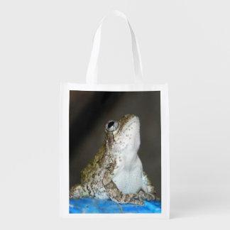 opnieuw te gebruiken zak w/frog boodschappentassen