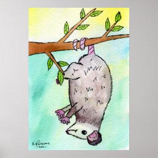 Opossum Danglin Poster