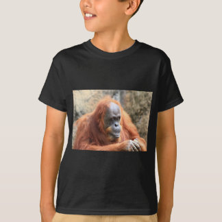 Orangoetan T Shirt