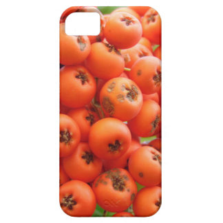 Oranje Bessen Barely There iPhone 5 Hoesje