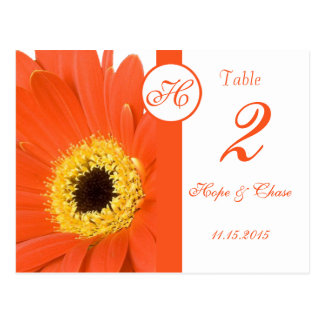 Oranje Gerber Daisy Table Number Cards Briefkaart