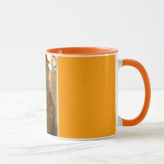 Oranje Gestreepte kat Citten Mok