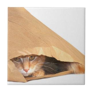Oranje gestreepte kat in zak keramisch tegeltje
