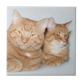 Oranje gestreepte kattentegel tegeltje