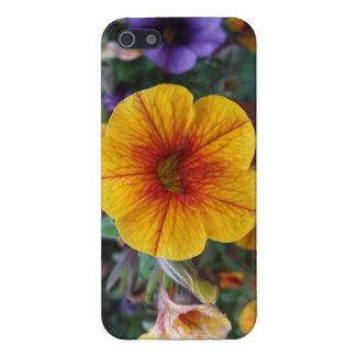 Oranje Petunia iPhone 5 Hoesjes