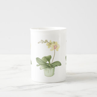 Orchidee in Groene Pot in de Botanische Mok van