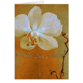 Orchidee in Schaduwen van Sinaasappel Kaart