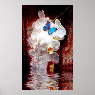 Orchideeën en de Druk van de Vlinder Poster