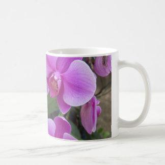 Orchideeën Koffiemok