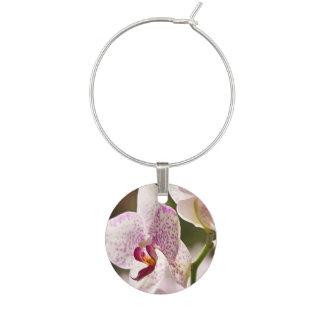 Orchideeën Wijnglasring