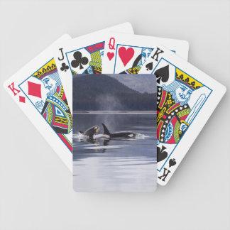 Orka's Poker Kaarten