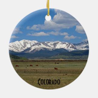 Ornament van de Bergen van Colorado het