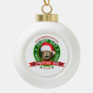 Ornament van de Foto van de Bal van het Aal van