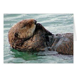 otter in gebed wenskaart