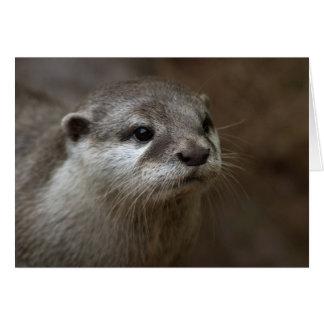 Otter Wenskaart