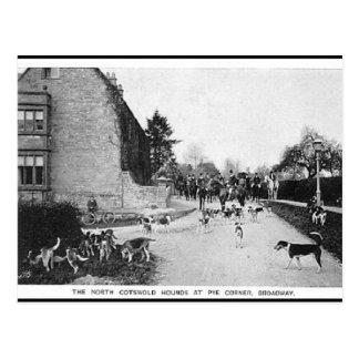Oud Briefkaart - de Honden van N Cotswold,
