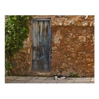 Oude deur en het rusten kat briefkaart
