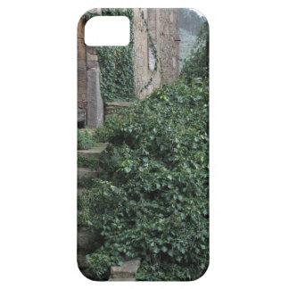 Oude verlaten landhoeve in het bos barely there iPhone 5 hoesje