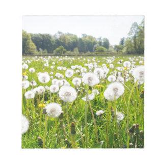 Overblown paardebloemen in groene Nederlandse Notitieblok
