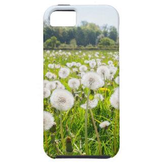 Overblown paardebloemen in groene Nederlandse Tough iPhone 5 Hoesje