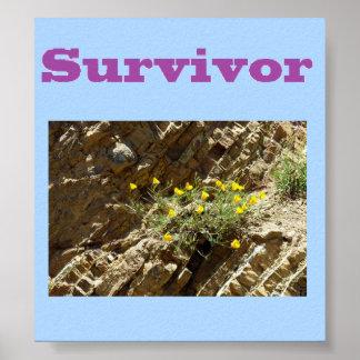 Overlevende Poster