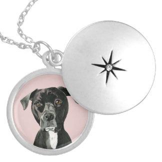 """""""Overwegend"""" het Schilderen van de Hond van de Zilver Vergulden Ketting"""