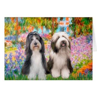 Paar 2 van Beardie - Tuin Briefkaarten 0