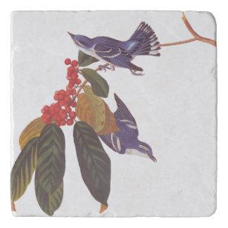 Paar van de Vogel van de Grasmus van Audubon Trivet