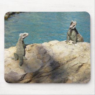 Paar van Fotografie van het Wild van Leguanen de Muismat