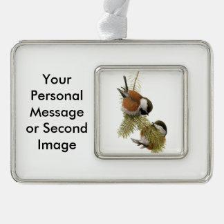 Paar van kastanje-Gesteunde Chickadee op de Boom Verzilverd Omlijst Ornament