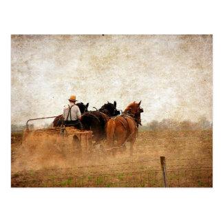 Paard Aangedreven Veldwerk Briefkaart