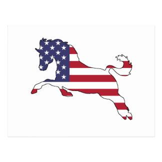 """Paard """"Amerikaanse Vlag """" Briefkaart"""