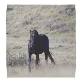 Paard Bandana