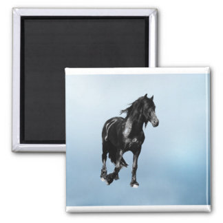 Paard die plotseling draaien magneet
