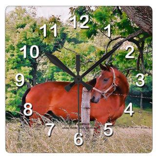 Paard door omheining-Muur Klok