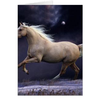paard het galopperen wenskaart