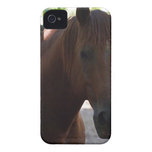 Paard iPhone 4 Hoesjes