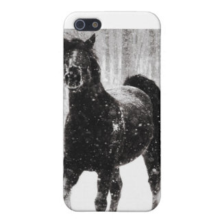 Paard in de Winter iPhone 5 Cover