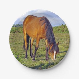 paard in het weidebord papieren bordje
