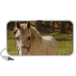 Paard iPhone Luidspreker