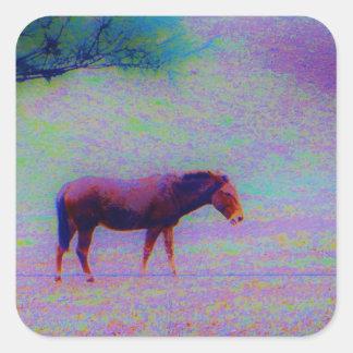 Paard OP een PAARS GEBIED van de REGENBOOG: voeg Vierkante Sticker