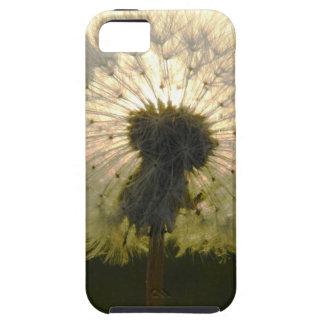 paardebloem in de zon tough iPhone 5 hoesje