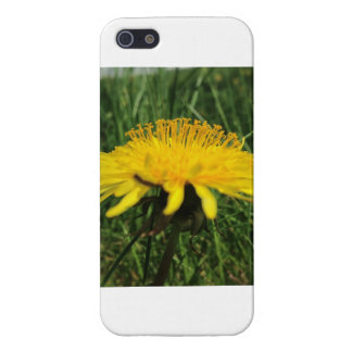 Paardebloem iPhone 5 Case