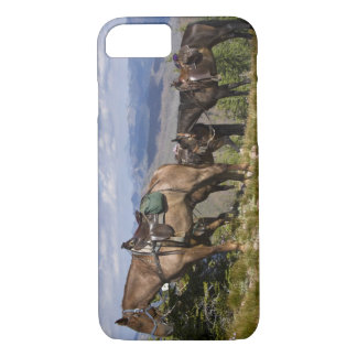 Paarden (Equus feruscaballus) bij schilderachtig iPhone 7 Hoesje