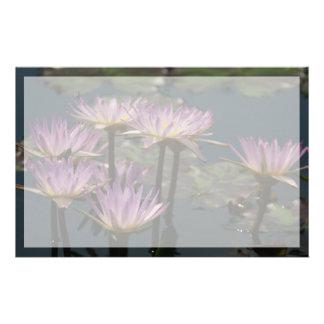 Paars Lotus Waterlilies Briefpapier