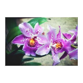 Paarse de Orchideeën Verpakte Druk van het Canvas